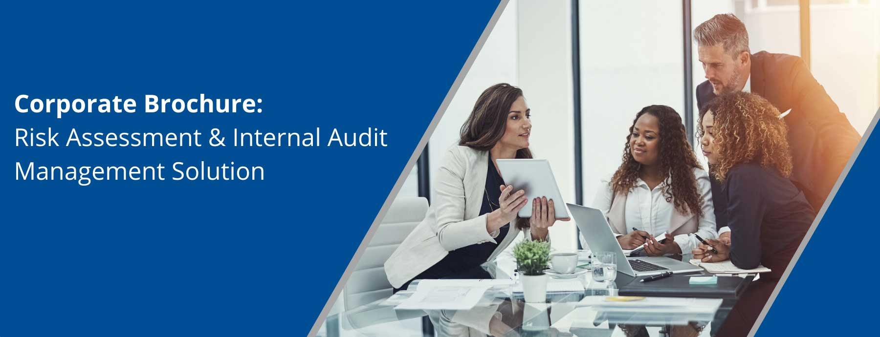 Corporate Brochure – Risk Assessment & Internal Audit Management Solution