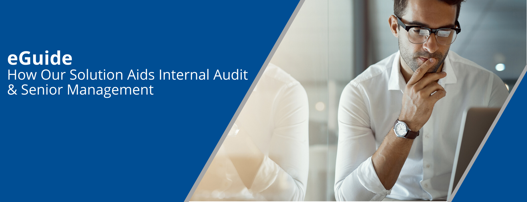 How Our Solution Aids Internal Audit & Senior Management